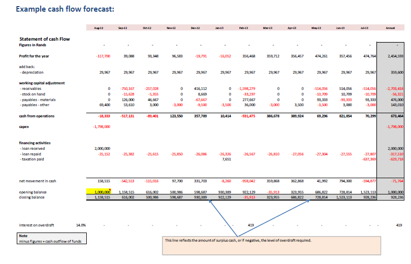 Example Cash FLow Forecast